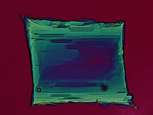 Ammonium tartrate crystal