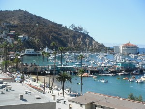 Many islands including Catalina island shown here have heavy boat traffic. Photo: By Elizabeth Pitts