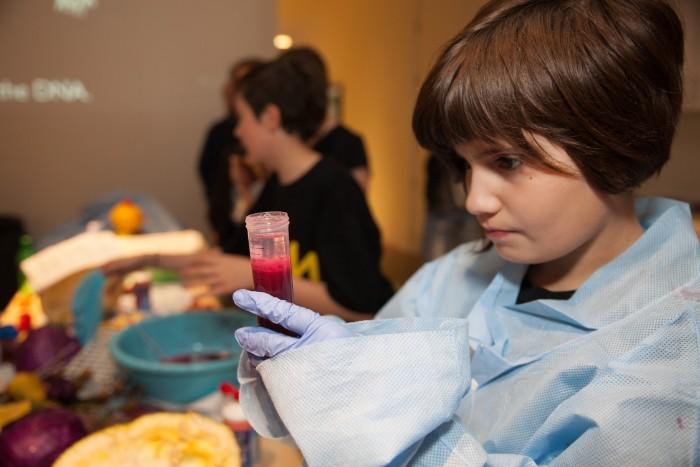 Adam Zaretsky Lab, DNA Food Art, DNA extraction experiment [Credit: York Wilson]