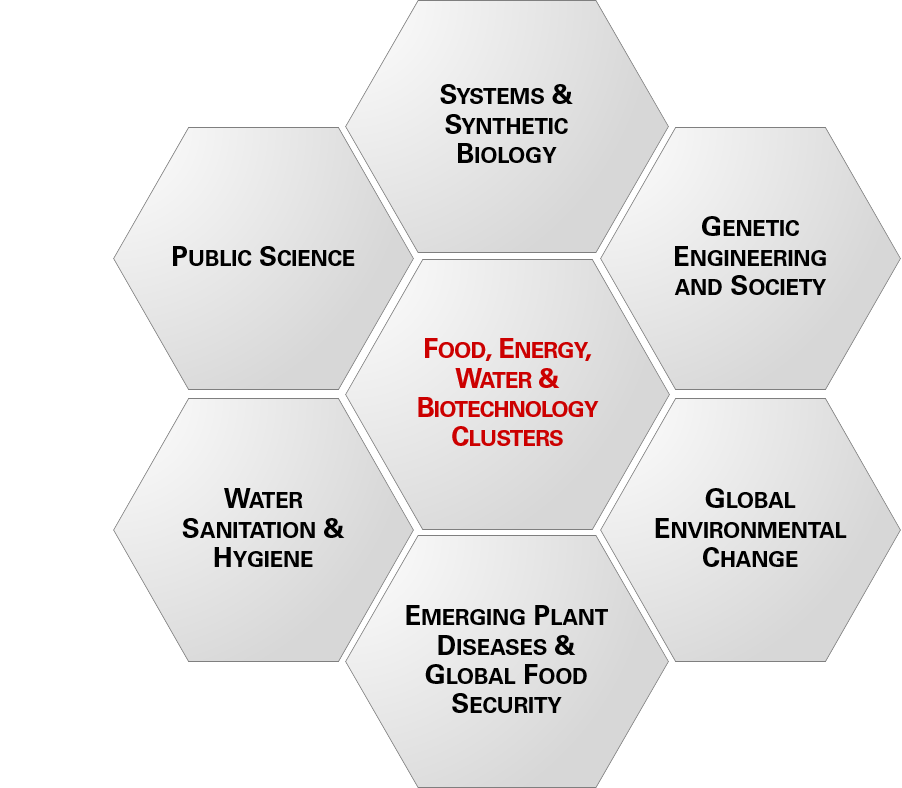 FEW & Biotech Clusters: Genetic Engineering and Society; Global Environmental Change; Emerging Plant Diseases & Global Food Security; Water Sanitation & Hygiene; Public Science; and Systems & Synthetic Biology