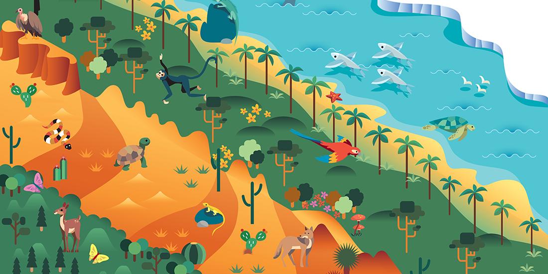 Illustration of biodiversity—forests, desert, oceans, tundra (Adobe Stock)