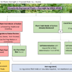 Figure 1 Summary of GE Plants Oversight in Proposed Rule - J. Kuzma
