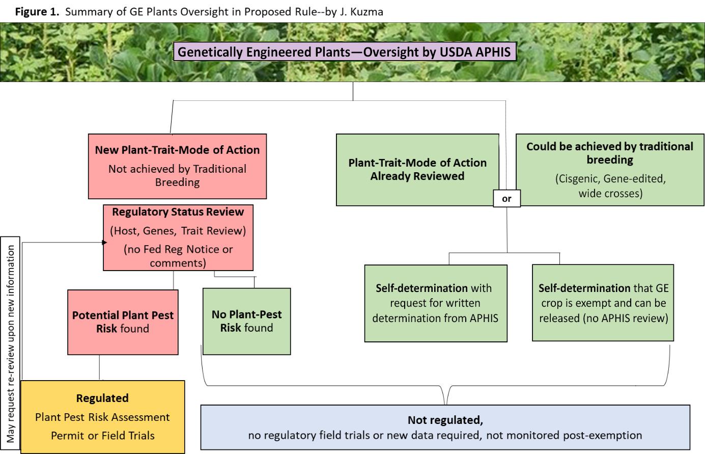 Figure 1 Summary of GE Plants Oversight in Proposed Rule - J. Kuzma