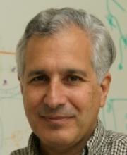 Jeff Lichtman