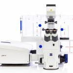 Zeiss LSM880 Confocal Microscope